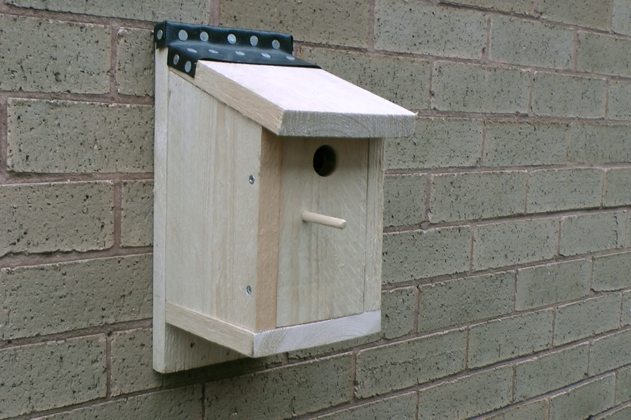 Bird box for blue tits and other small birds