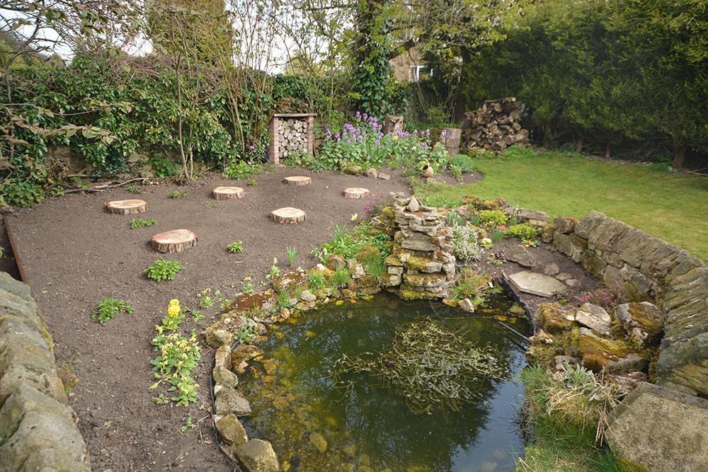 New wild flower garden